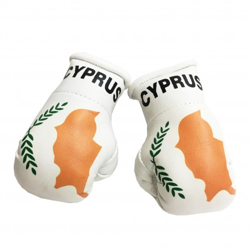 Cyprus Boxing Gloves